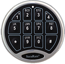 SecuRam SafeLogic
